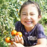 家庭菜園初心者向けの記事まとめ!道具や育てやすい野菜がまるわかり!