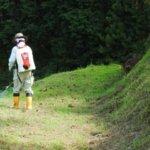 除草剤が及ぼす人体への影響とは?家庭菜園や農作物から考える安全性